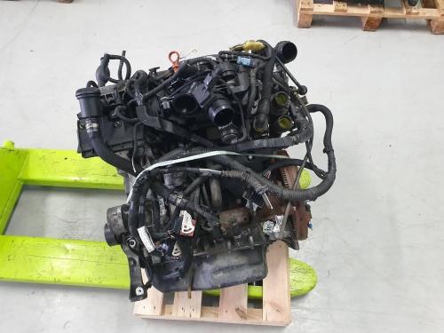 rh02 4